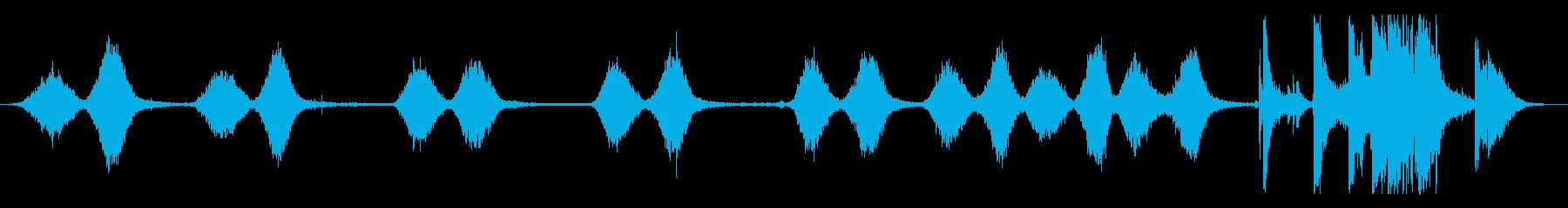 レッグマシン:さまざまなREPS、...の再生済みの波形