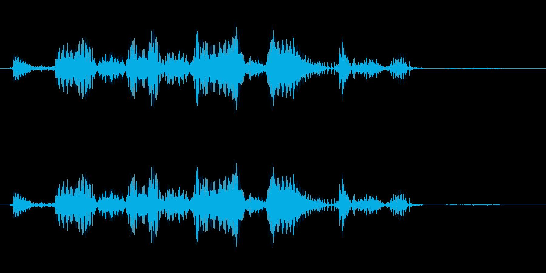 えへへへ 幼児(1~2歳)の笑い声の再生済みの波形