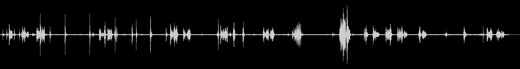 動物園-内部-ロロス3の未再生の波形