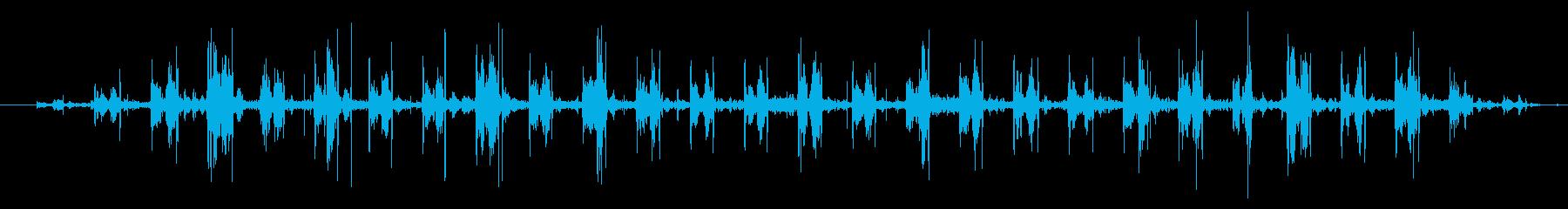 超音波ソノグラフ:一定の鼓動の再生済みの波形