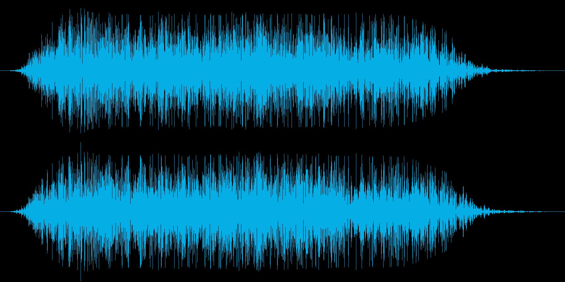 アフリカライオンの咆哮(スタンダード)の再生済みの波形