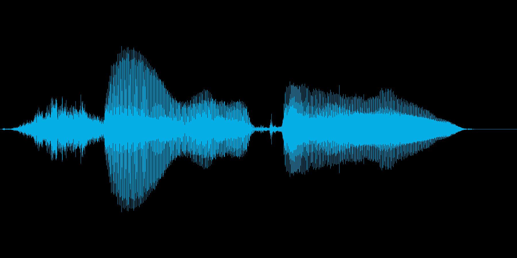 シーユーアゲイン(こども)の再生済みの波形