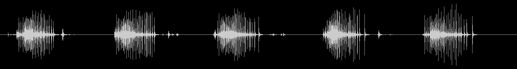 オルゴール フォーリー03-1(巻く)の未再生の波形
