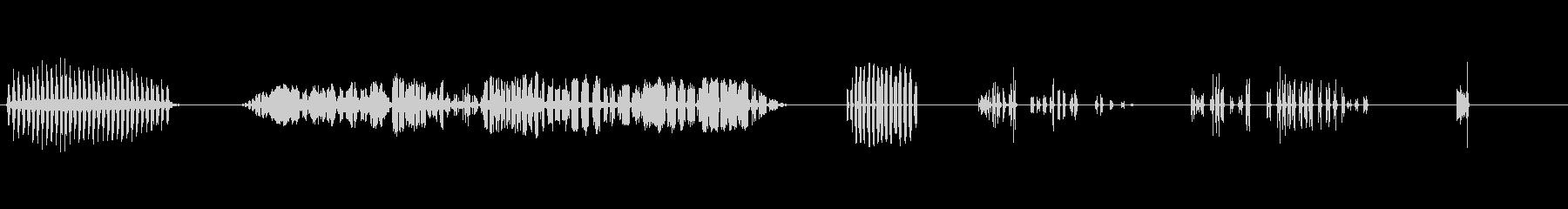 鷹の未再生の波形