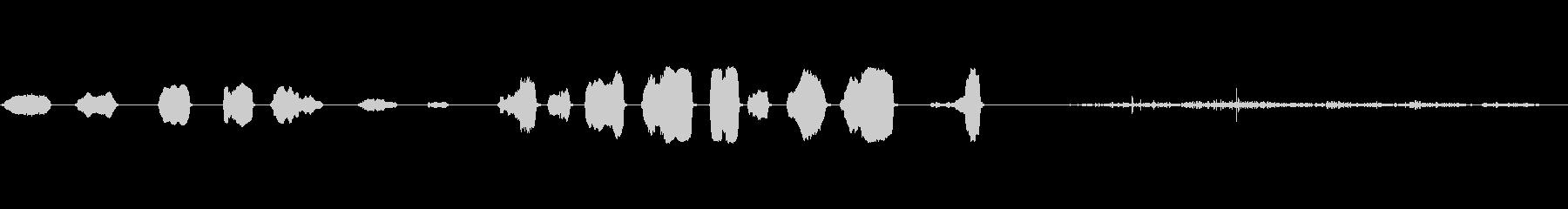ブラックベアカブ、うめき声、PUR...の未再生の波形