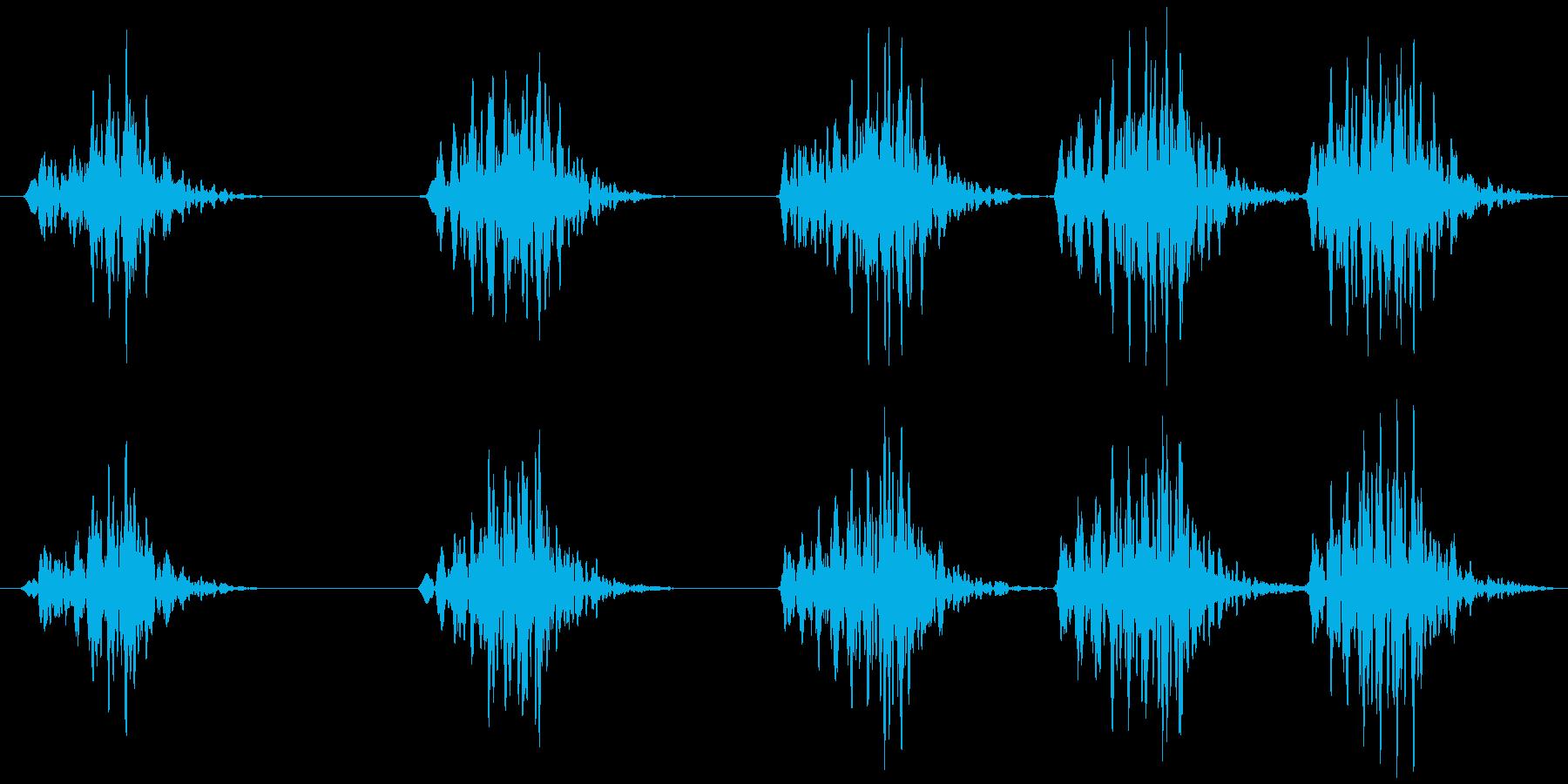 コオロギ キリキリ…キリキリキリの再生済みの波形