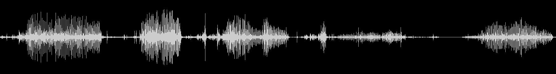 ピットブルドッグロックガーグルスナールの未再生の波形