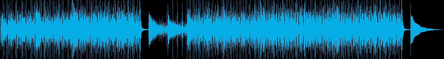 レゲエ/カリブ海の吹奏楽器。旅行や...の再生済みの波形