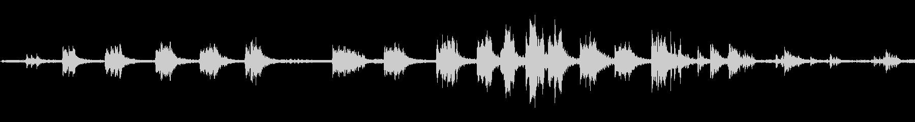 グレイグースランディング、鳥; D...の未再生の波形
