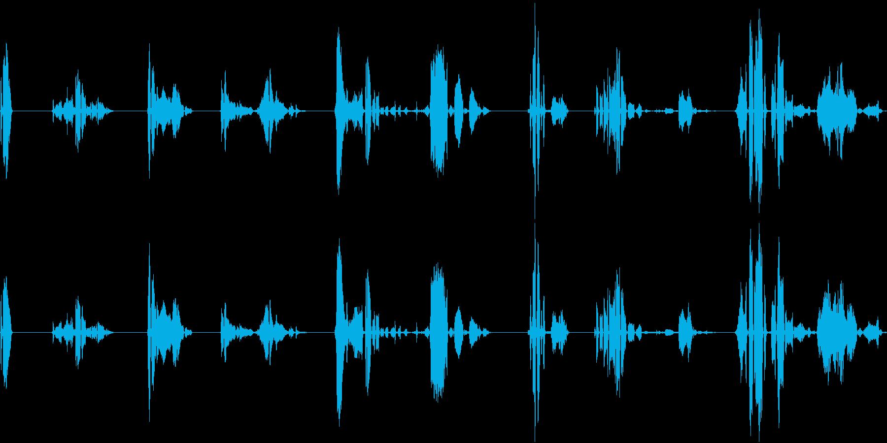 子供、2.5歳、笑い、8バージョン...の再生済みの波形
