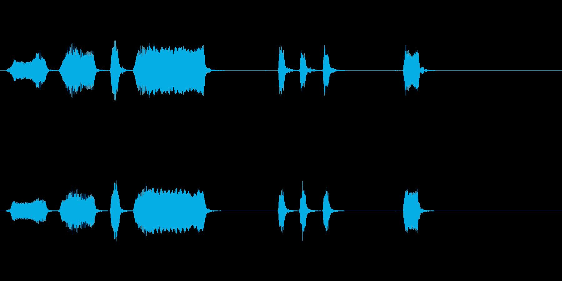 エアホイッスルアンティーク3をトレ...の再生済みの波形
