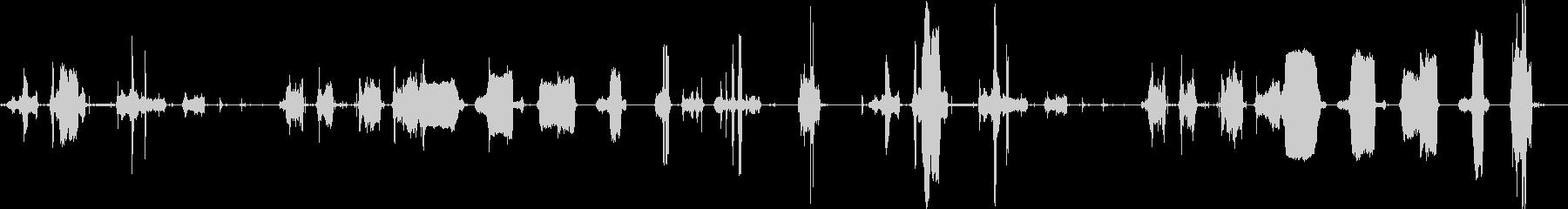 ホースヒス音と細いヒス音の未再生の波形
