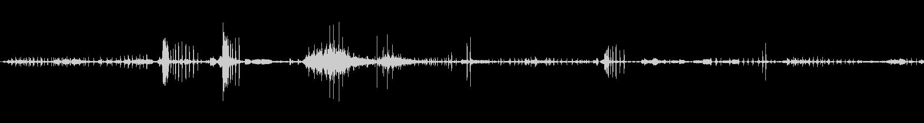 アヒルの鳥1の未再生の波形