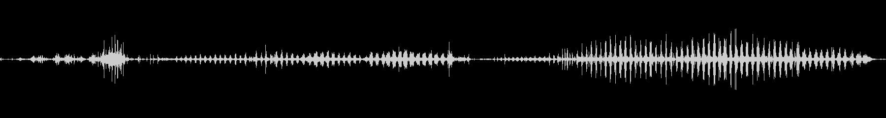 ピットブル犬のうなり声の未再生の波形