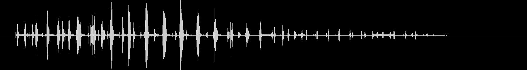 ペンギンの鳴き声。バックグラウンド...の未再生の波形