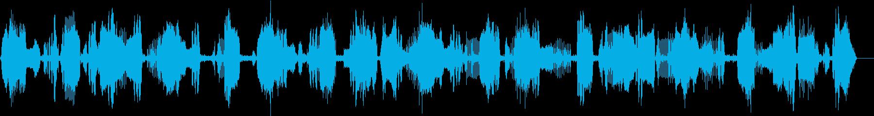 鳥1の再生済みの波形