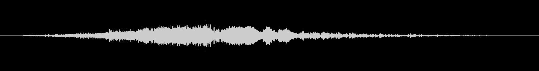 バキュームシールフーシュの未再生の波形