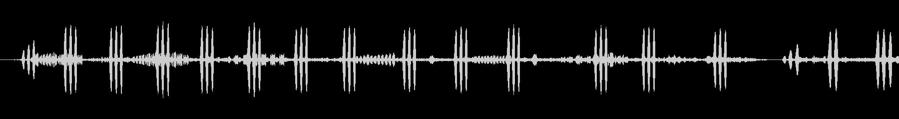 ヤツガシラの未再生の波形