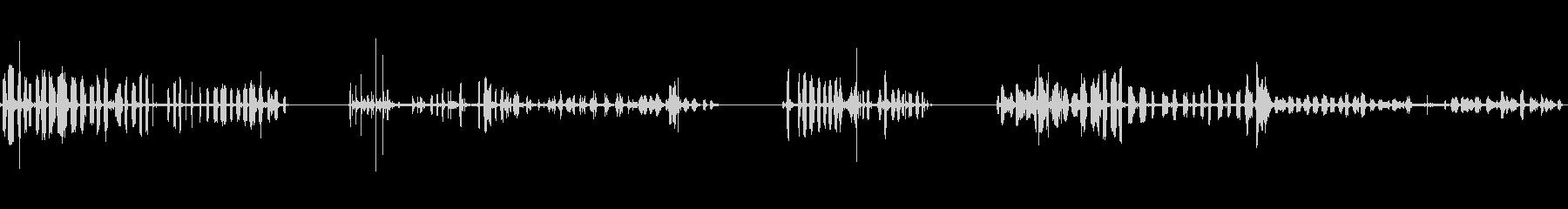 モルモット、閉じる、ケージ内、ギャ...の未再生の波形