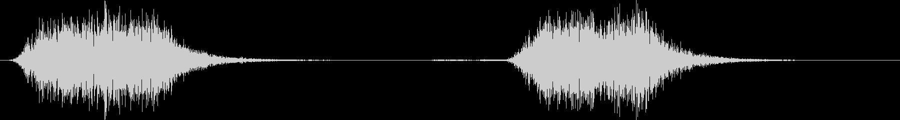 大きなオウム:2つのきしむ声、鳥の未再生の波形