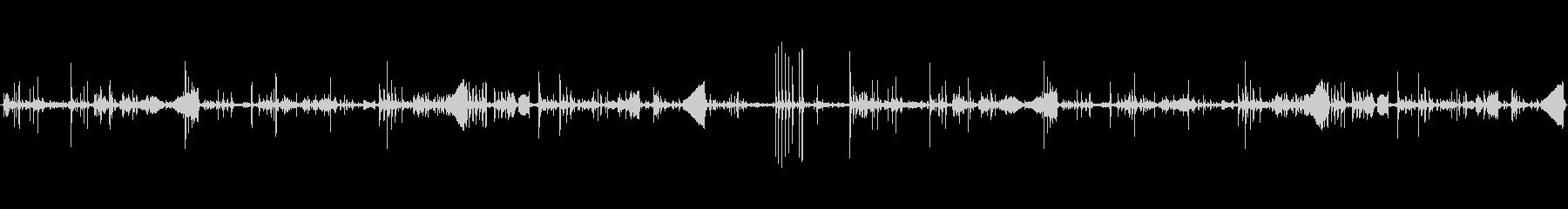 ヘン、ドリンクヘン、バード; DI...の未再生の波形