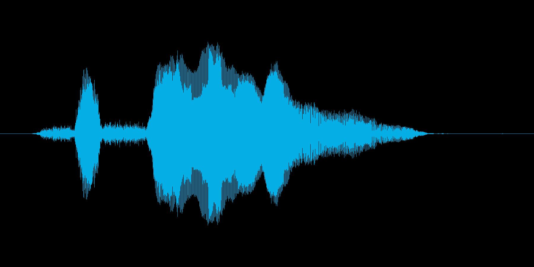 ヒヒーン!の再生済みの波形