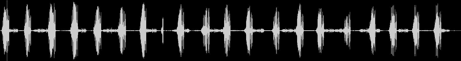 【環境音】 21 バードウォッチングの未再生の波形