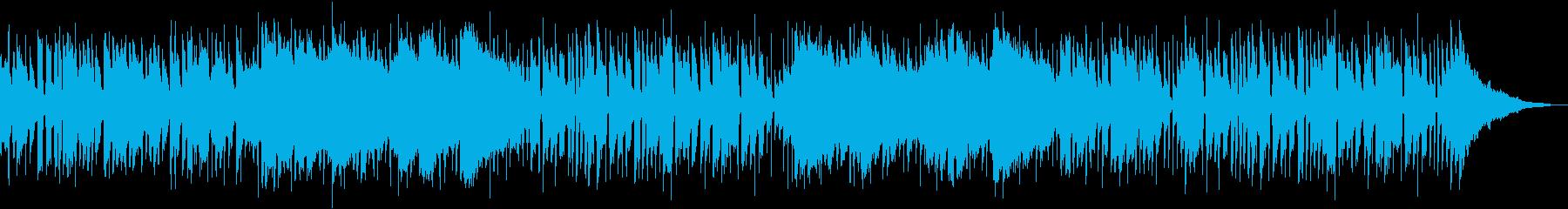 インディー アクション 技術的な ...の再生済みの波形