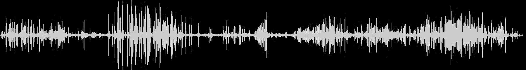 【生録音】フラミンゴの鳴き声 長尺の未再生の波形
