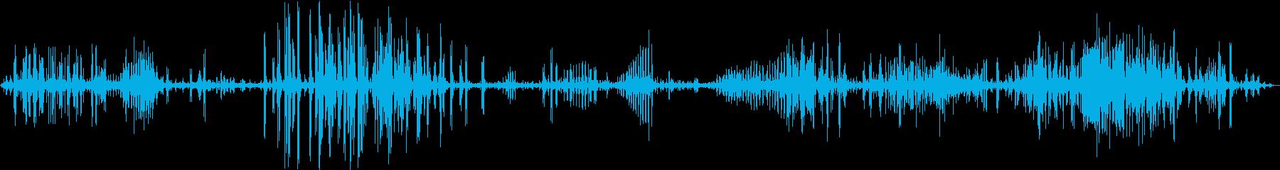 【生録音】フラミンゴの鳴き声 長尺の再生済みの波形