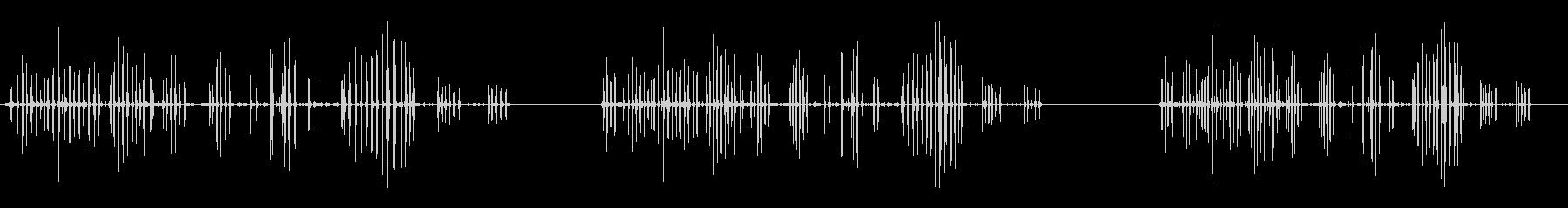 ラットチャープの未再生の波形