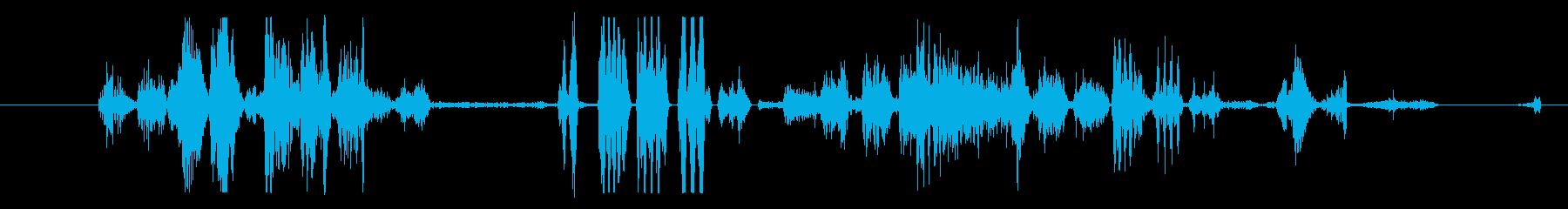 イメージ クレイジートーク06の再生済みの波形