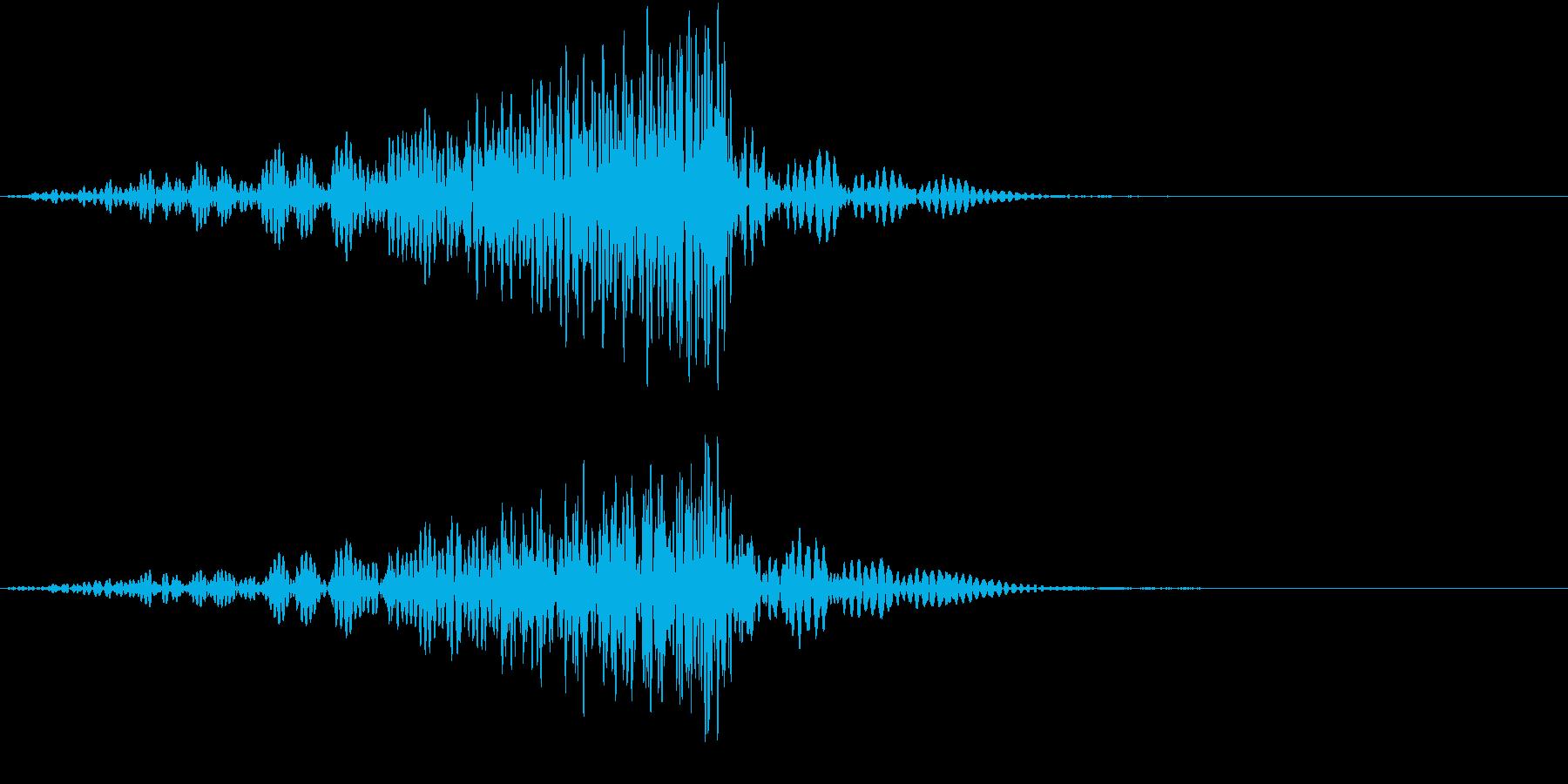 悪い夢に入り込む音の再生済みの波形