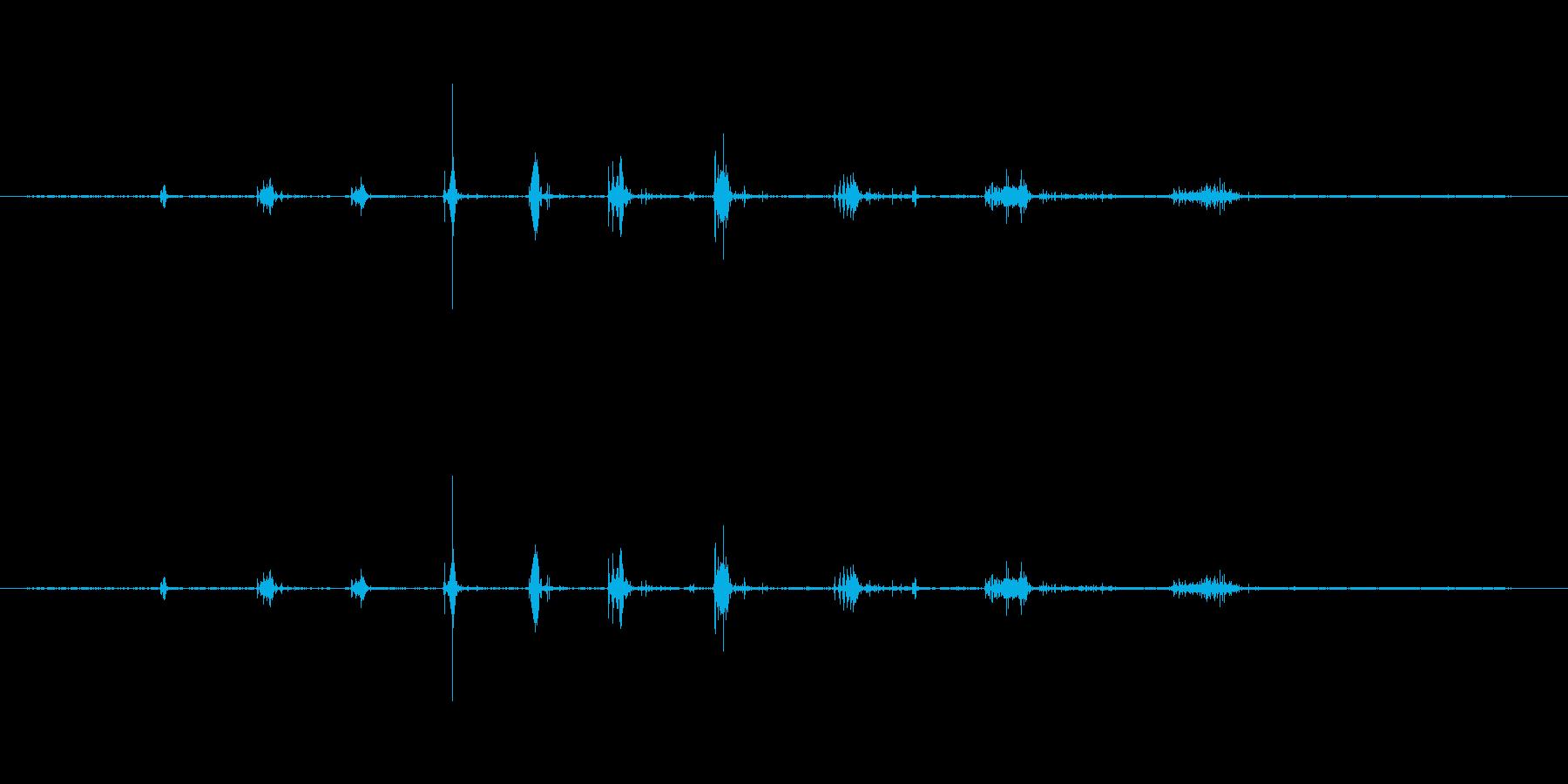 ザッザッジリ...という足音の再生済みの波形