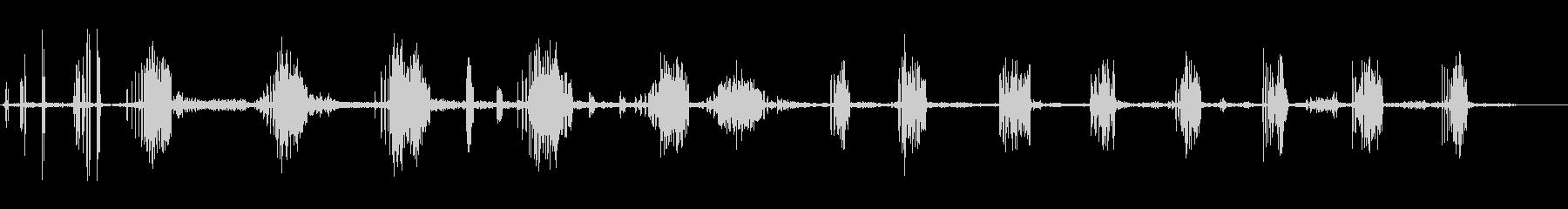 トトビア・テレロラの未再生の波形