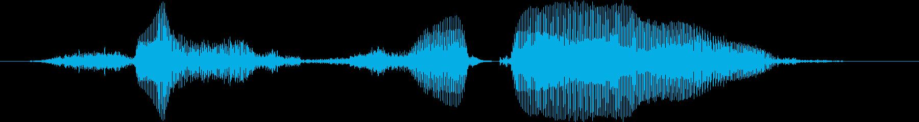 さっすがー!【ロリキャラの褒めボイス】の再生済みの波形