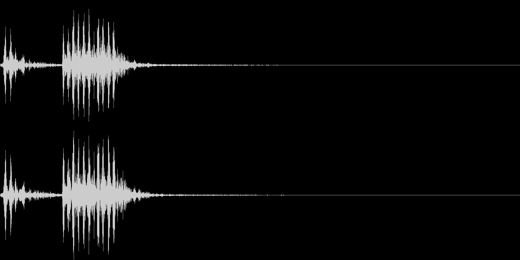 【生録音】フラミンゴの鳴き声 7の未再生の波形