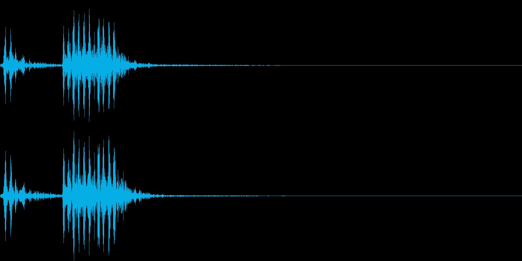 【生録音】フラミンゴの鳴き声 7の再生済みの波形