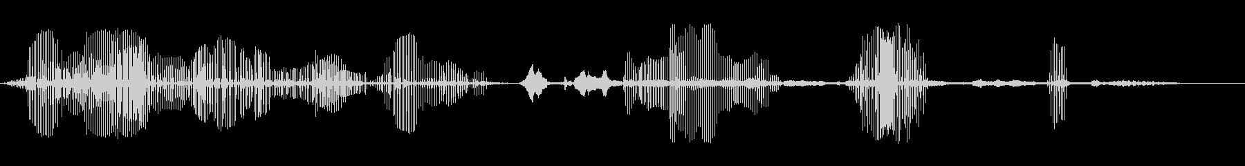 コウノトリ1の未再生の波形