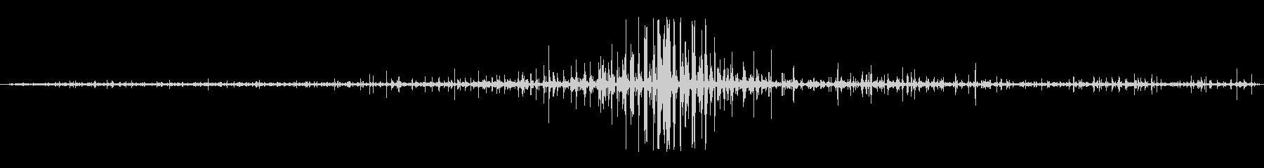 ホースオンダート:ウォークバイの未再生の波形