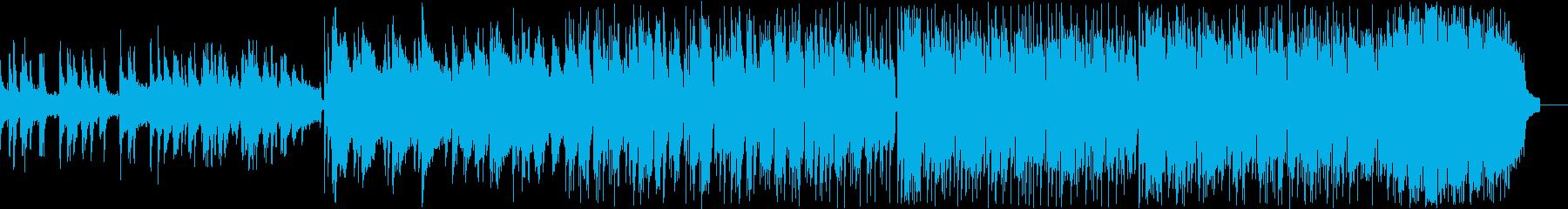 動画 説明的 静か エキゾチック ...の再生済みの波形