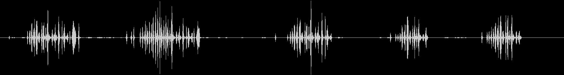 フィンチ、ハウスチャープ。背景をさ...の未再生の波形