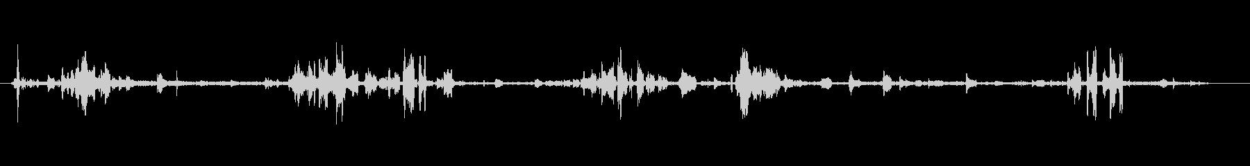 鳥カモメ-カモメの鳴き声-一般的な雰囲気の未再生の波形