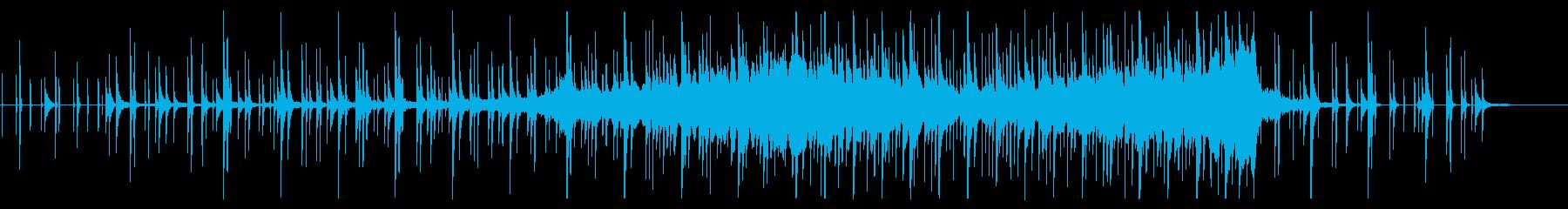 教育系 何かをじっと観察する時のBGMの再生済みの波形
