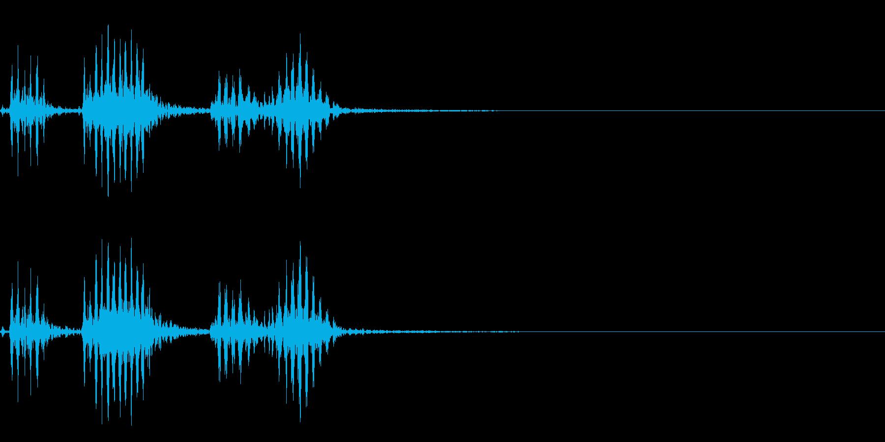 【生録音】フラミンゴの鳴き声 21の再生済みの波形