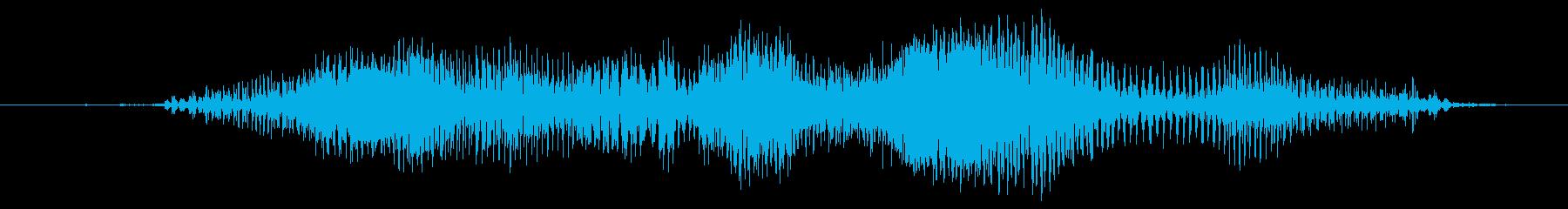 スモールケース:ジップアップ、ミデ...の再生済みの波形