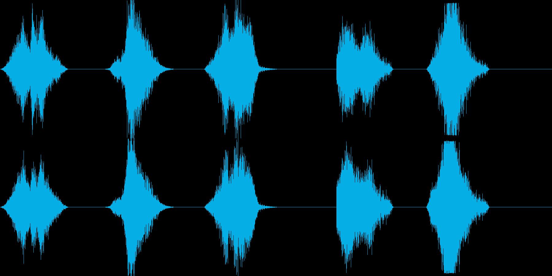 Whoosh-bys X5の再生済みの波形