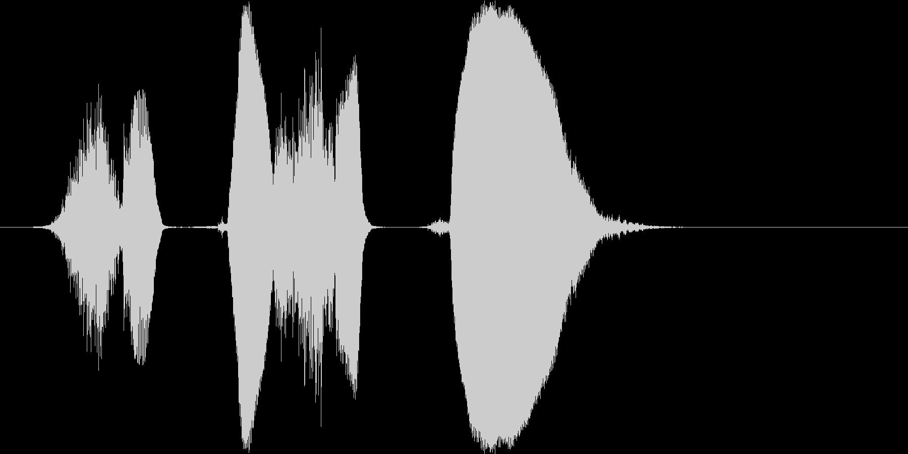 「しくしく」の未再生の波形