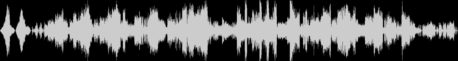 カミーユ・サン=サーンスのカバーの未再生の波形