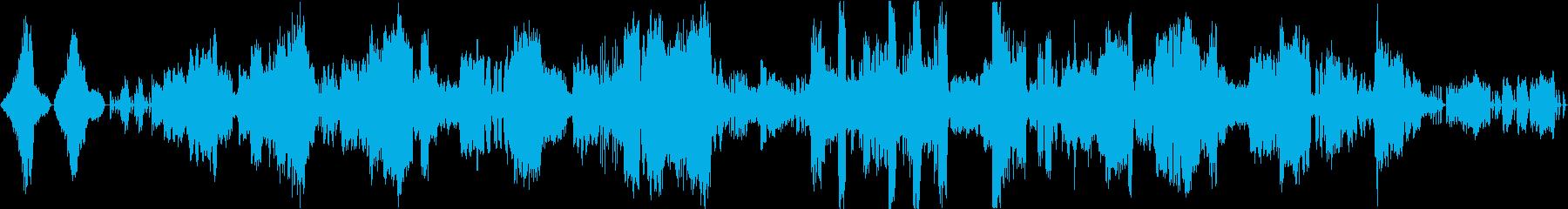 カミーユ・サン=サーンスのカバーの再生済みの波形